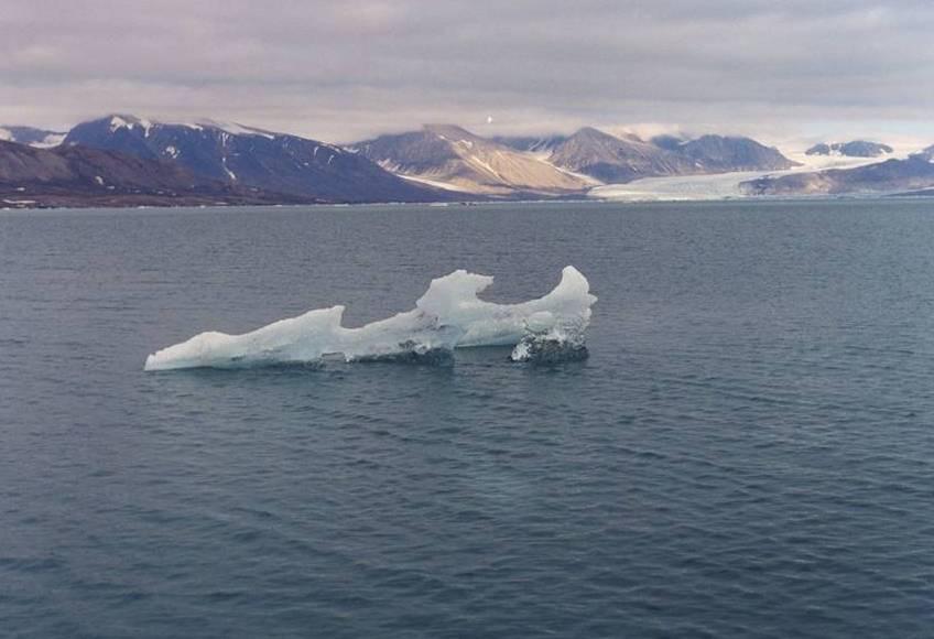 Un mini iceberg nel fiordo di Ny Ålesund