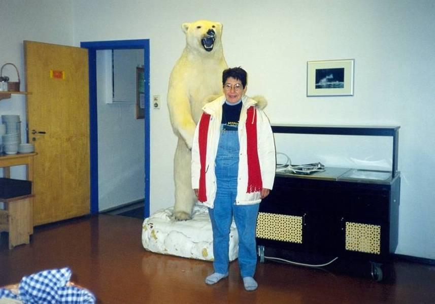 Le dimensioni dell'orsacchiotto polare