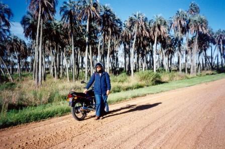 Palme e on the road in America latina